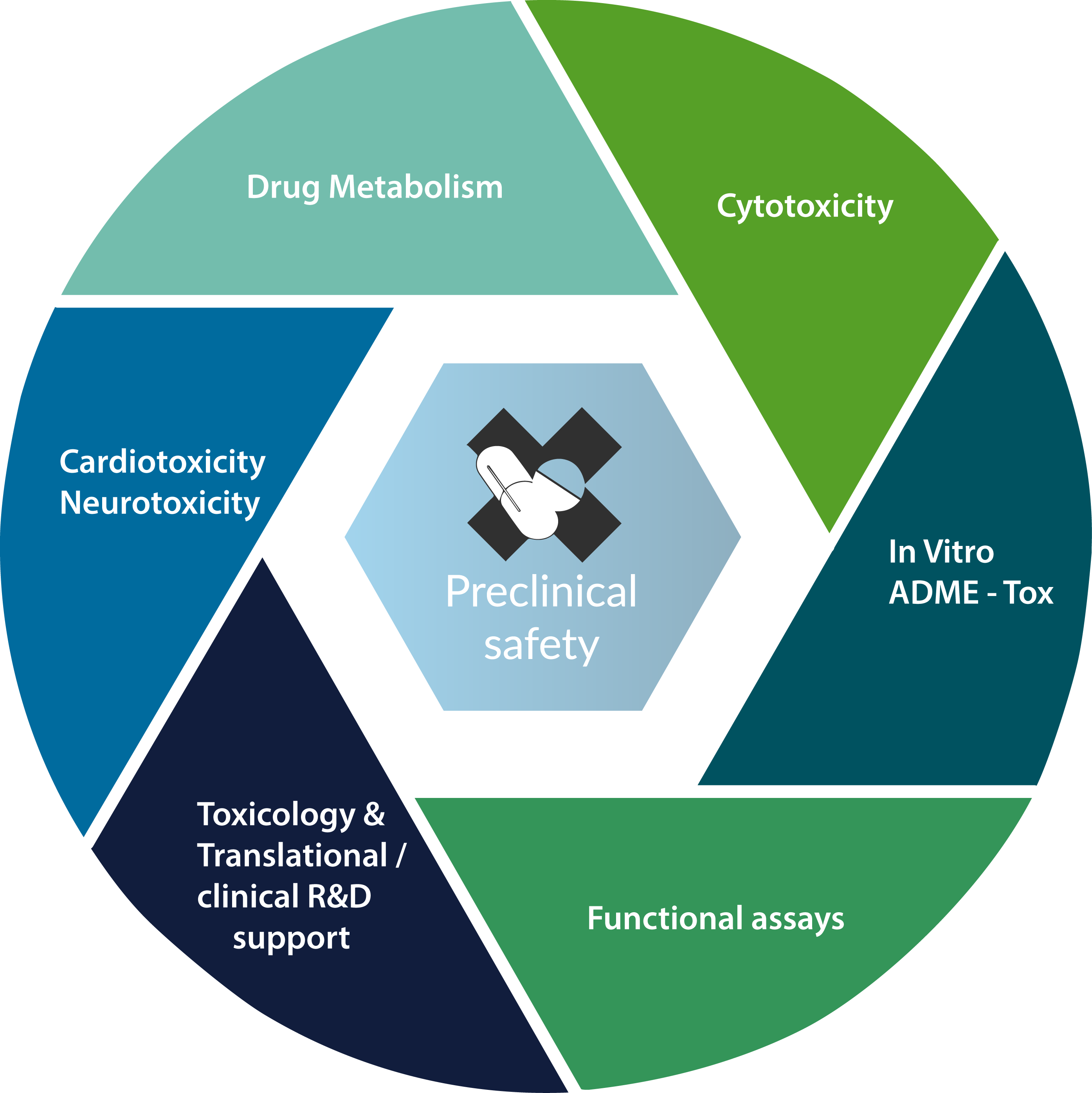 Preclinical safety