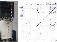 Mass Spectrometry and NMR