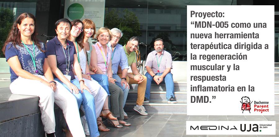 """▪ Proyecto: """"MDN-0005 como una nueva herramienta terapéutica dirigida a la regeneración muscular y la respuesta inflamatoria en la DMD"""""""