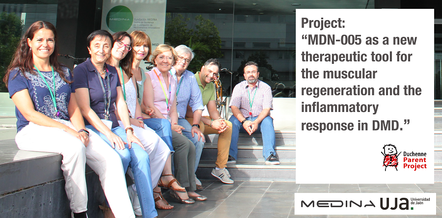 "▪ Project: ""MDN-0005 as a new therapeutic tool for the muscular regeneration and the inflammatory response in DMD"""