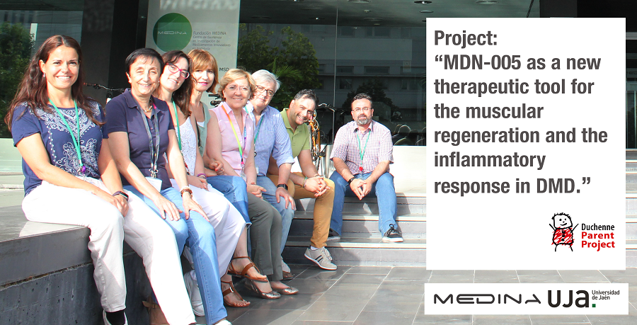 "Project: ""MDN-0005 as a new therapeutic tool for the muscular regeneration and the inflammatory response in DMD"""