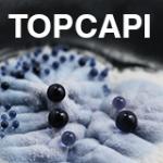 TOPCAPIlogo2-150x150