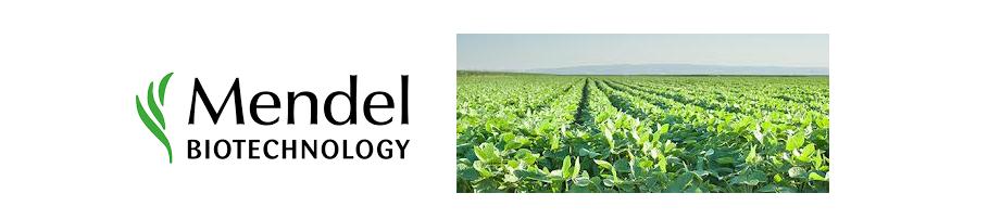 ▪ Mendel y MEDINA colaboran buscando posibles aplicaciones agricolas a la collección de productos naturales