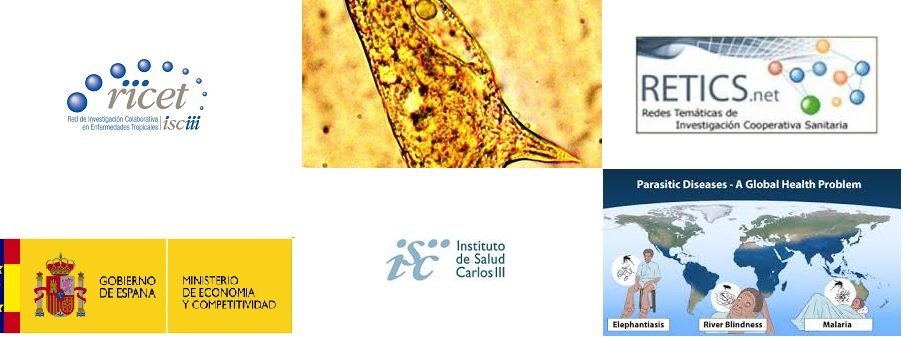 ▪ RICET strengthens translational research in tropical diseases