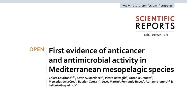 First evidence of anticancer and antimicrobial activity in Mediterranean mesopelagic species.